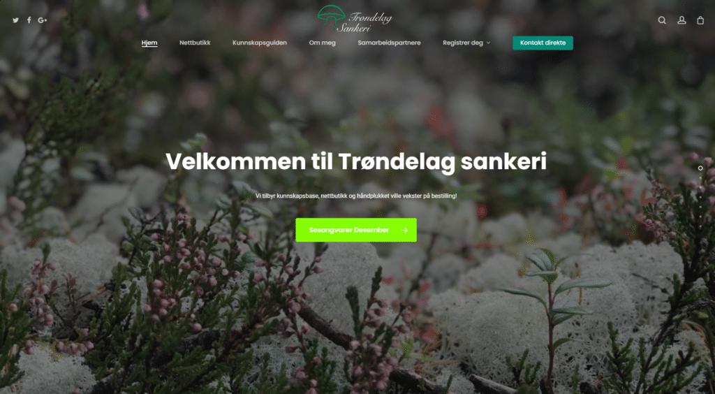 Trøndelag Slakteri